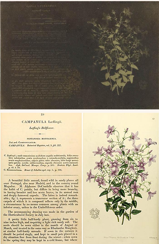 SC573_1937-1047_journal